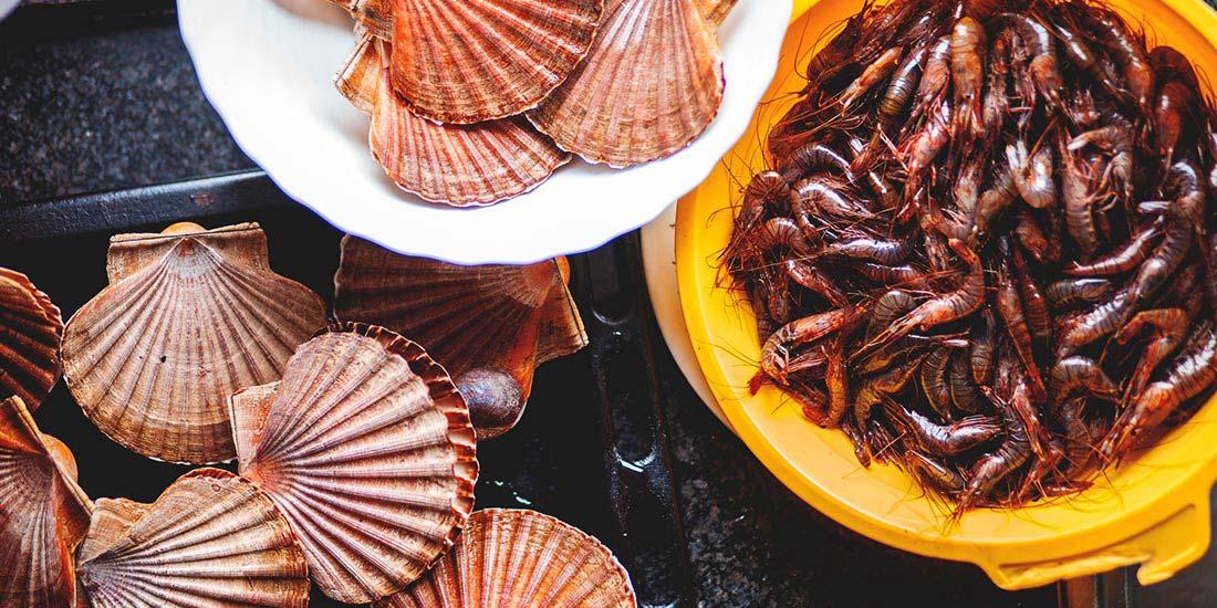 Seafood epiphany - galangal- galicia - spain - travel
