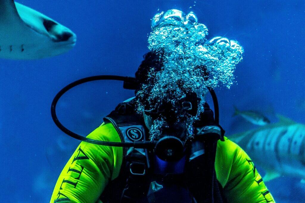 scuba diving in La Palma in Spain in winter